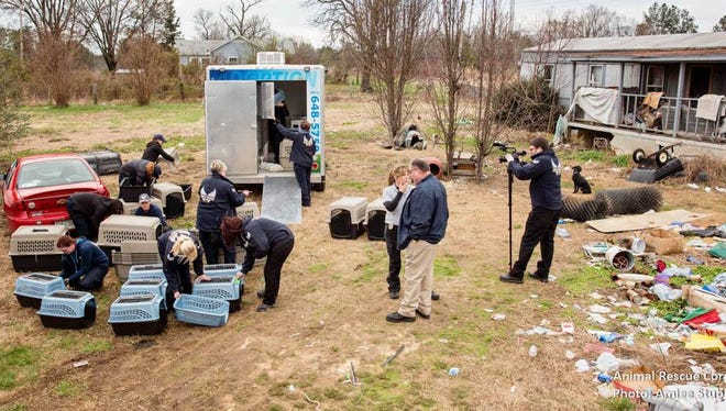 "Animal Rescue Corps teams in West Tennessee rescued more than 80 animals as part of ""Operation Rescue."""