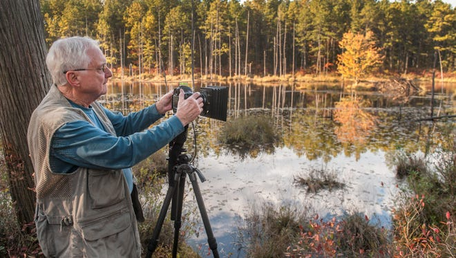 The more time Albert Horner spent photographing there, 'the more I became an advocate for the Pine Barrens.' The Medford Lakes artist recently compiled his work into 'Pinelands: New Jersey's Suburban Wilderness.'