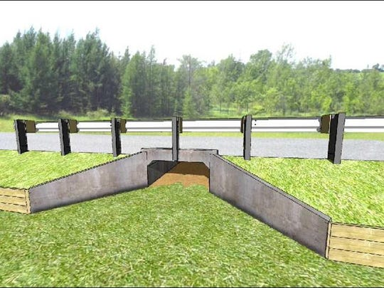 Rendering of a culvert for salamanders, with side wings.