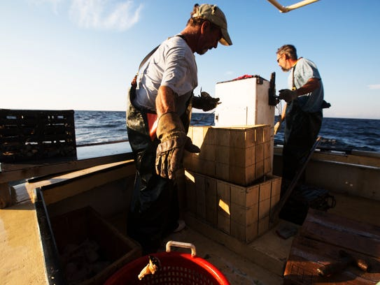 Patrick Wilson and Joel Stoddard work stone crab traps