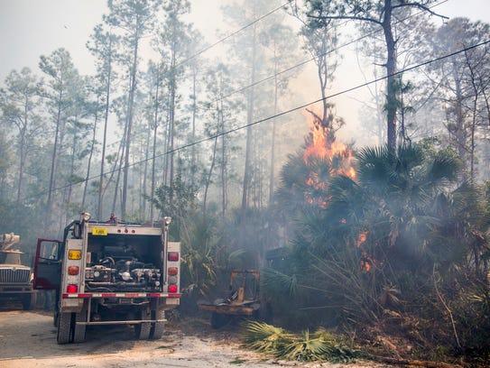 A brush fire burns across the street from Belle Meade