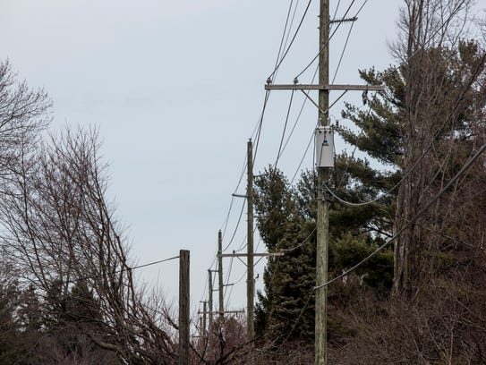 Power lines are seen running through recently trimmed