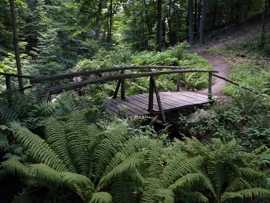 A bridge on the Frances Reese Woodland Trail of Discovery