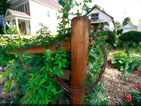 A rusty barbwire hangs on a wooden post as a decor