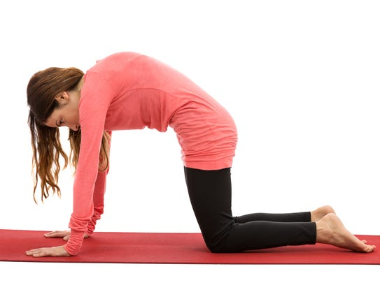 Woman doing cat pose during yoga.