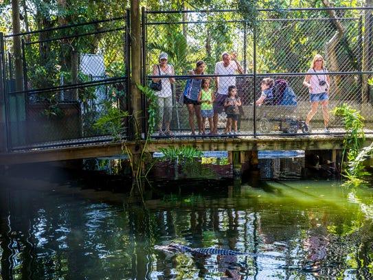Families visit the Everglades Wonder Gardens in Bonita