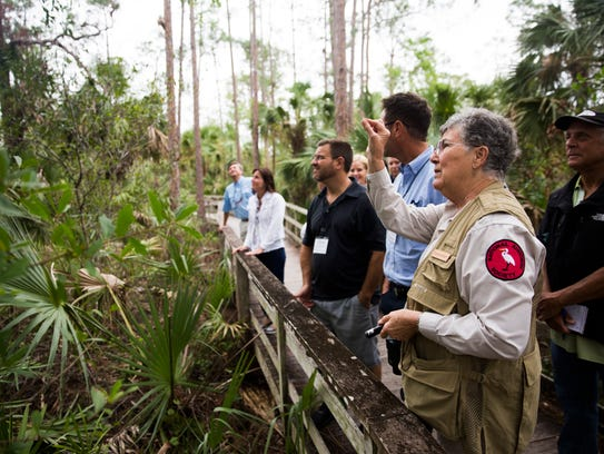Sharon Stilwell, a boardwalk naturalist, talks about wildlife during a tour at Corkscrew Swamp Sanctuary east of Bonita Springs on Thursday, Nov. 16, 2017. About 60 leaders from Leadership Florida's Cornerstone XXXIV class visited Audubon's Corkscrew Swamp Sanctuary as part of the organization's 10-month educational program.