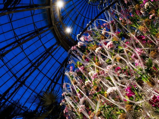 Enjoy the NY Botanical Garden's Orchid Show at night