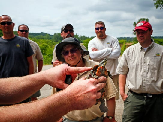 Fisheries Management Biologist Chad Dolan holds a turtle