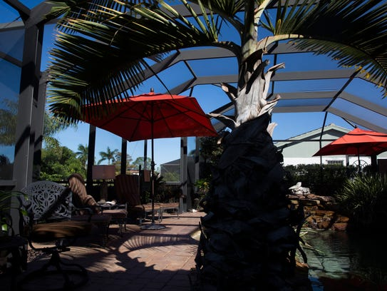 backyard escapes couple finds tropical mexican colonialism in east