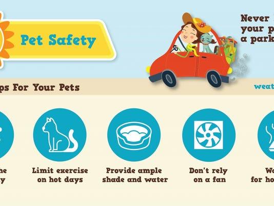 636323608047323324-safety-pets.jpg