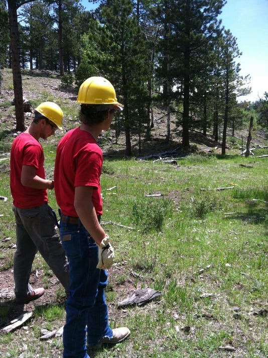 Youth Conservation Crews-photo-3