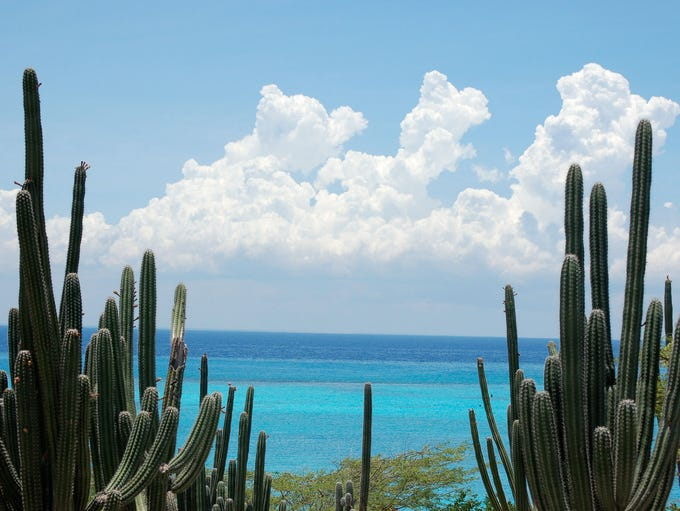 The Dutch island of Aruba has a coastal landscape contrasting