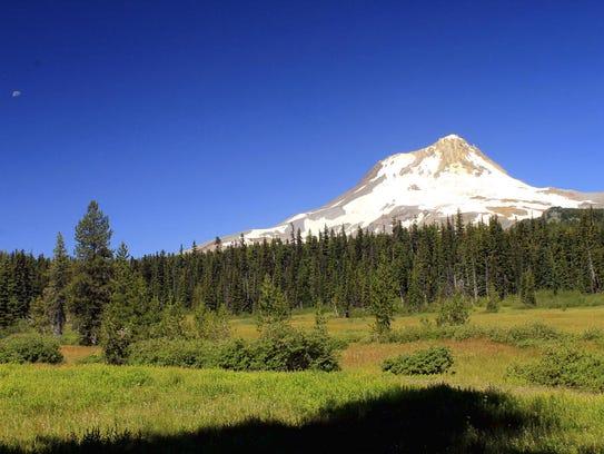 Elk Meadows looks out on Mount Hood.