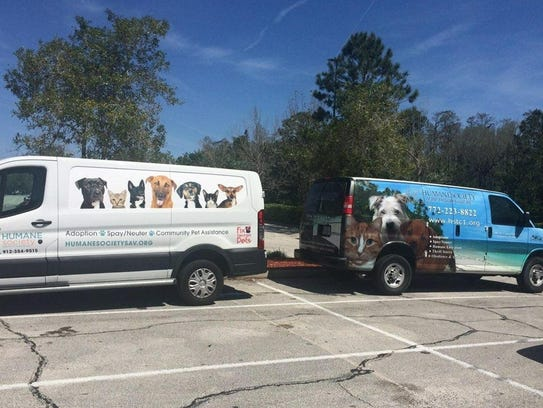 The shelter transport vans meet up.