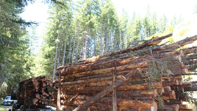 Jerry Dean Sramek, 55, of Salem, died when a log fell from his loaded truck.