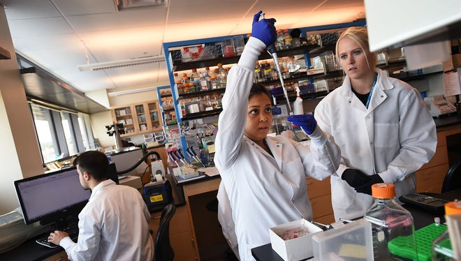 In 2015: UNR Medical School grad student Denise Reyes, center, and undergrad Heather Green work in a lab at the Center for Molecular Medicine building in Reno.