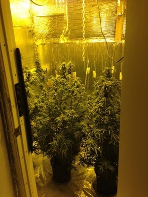 Delaware State Police say a Magnolia man was growing marijuana at a house on Covenant Lane.