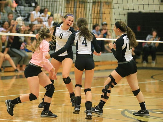 Plymouth players including Jordan Schamp (No. 8) and Brianna Risi (No. 4) celebrate a Wildcat point.