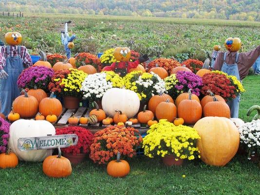 -ELM 100312 pumpkins 7 jdm.jpg_20121003.jpg