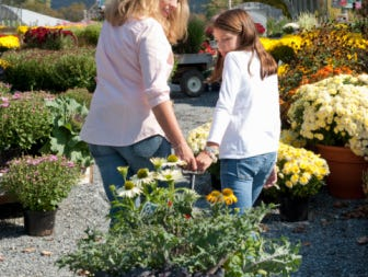 Hurry don't miss out. Mothers Day is just around the corner and spring plants are ready to bloom.