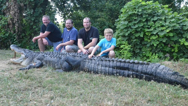 Hunters (from left) Clayton Gibson, Parker Gibson, Reeve Gibson, and Aidan Gibson, all of Natchez, boke the state record for heaviest alligator with this 822-pound beats.