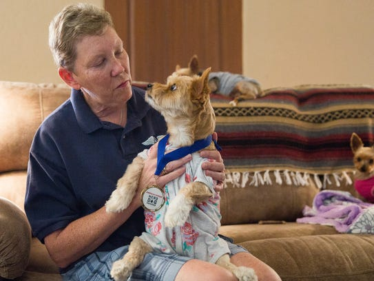 Judy Walter, holds her dog, Mango a five-year-old yorkie-cairn