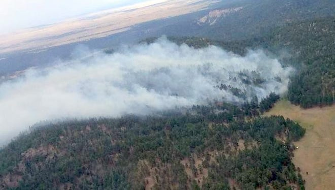 An aerial shot of the Miller Fire which is nine miles north of Luna and covered about 62 acres.