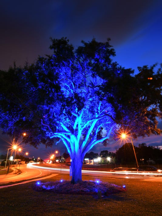 Blue Tree in Downtown Melbourne
