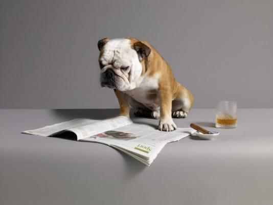 636241397702569559-reading-dog.jpg