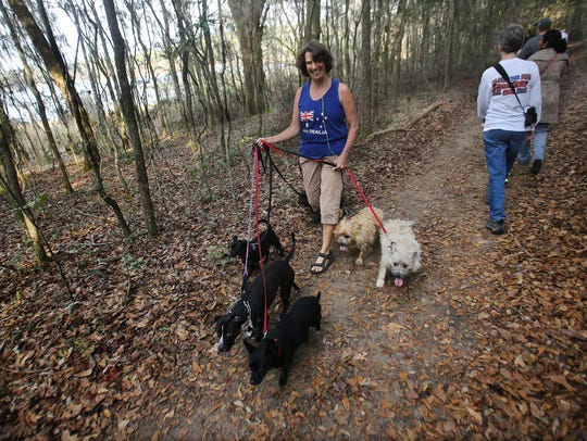 Hike around Lake Overstreet at Maclay Gardens for the