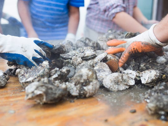 The first oyster roast at McConnel House will be Saturday.