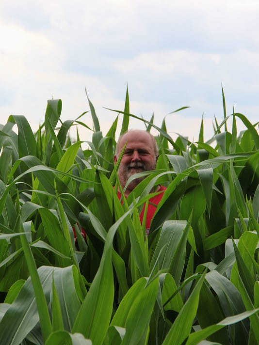 636063366938212028-WSF-0812-corn.JPG
