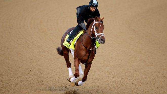 Exercise rider Ezequiel Perez takes Kentucky Derby entrant Danza for a morning workout at Churchill Downs Thursday, May 1, 2014, in Louisville, Ky. (AP Photo/Charlie Riedel)