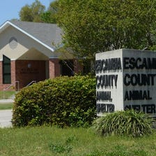 Escambia County Animal Shelter