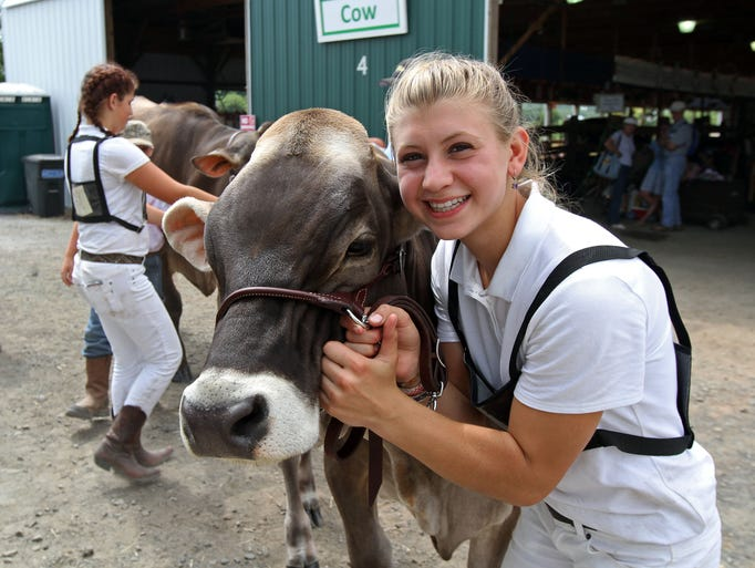 Sadie Strober of Stockton, holds her Brown Swiss cow just before the two enter the ring for competition.This is the second day of the Hunterdon County 4-H and Agriculural Fair. The fair, held at South County Park, runs through Sunday, August 20 2014. Ringoes NJ. Photo by Kathy Johnson BRI EST 0822 Hunterdon County Fair PHOTOS Day 2