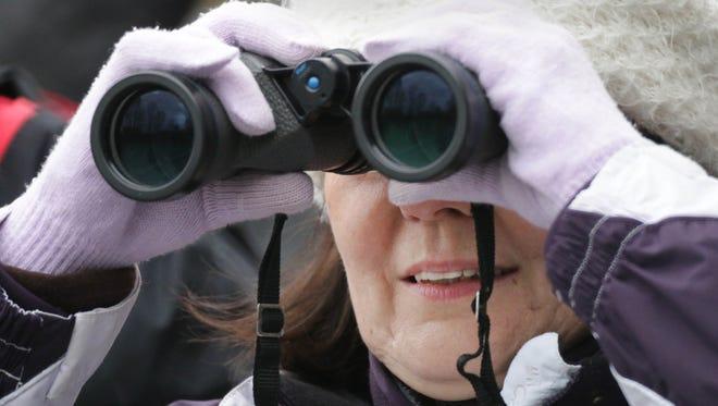 Sue Kuckuk of Plymouth observes migratory birds with a set of binoculars at Ellwood H. May Environmental Park May 14 in Sheboygan.