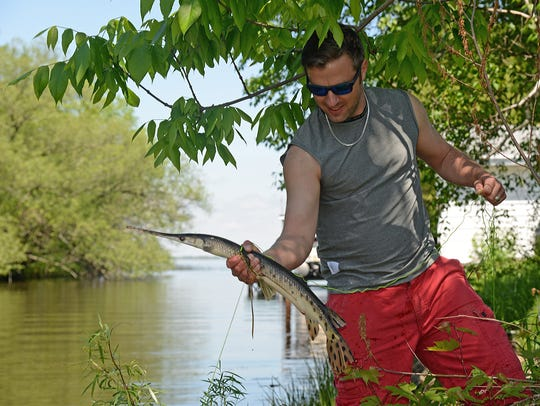 Anglers and bowfishermen should consider not killing
