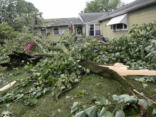 A large section of a tree fell on Gordon Ziegler's