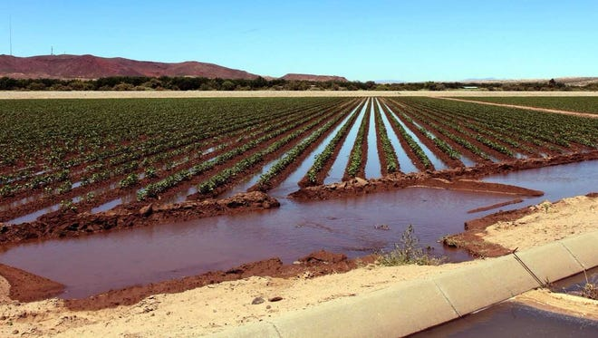 Farmers in the Elephant Butte Irrigation District are invited to a meeting Thursday, Sept. 7, to talk about water allotments.