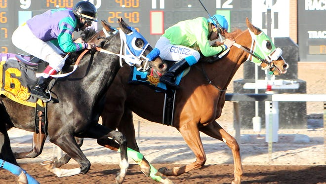 Rising Giant and Streaks Bro, the first two finishers in the Albert Dominguez Handicap on Jan. 16 at Sunland Park Racetrack and Casino, will meet once again in today's $85,000 New Mexico State University Handicap.