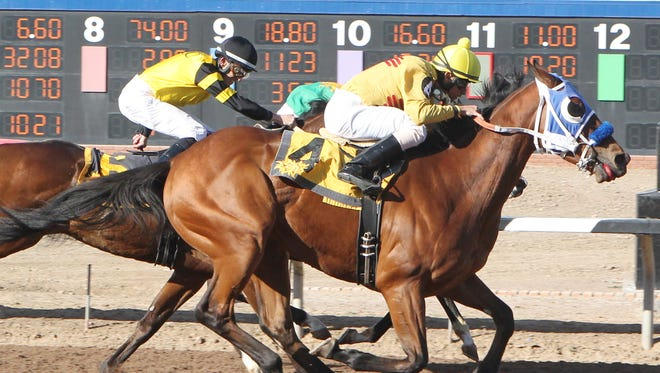 GM Gage, with Roimes Chirinos aboard, gets to the wire first in a driving finish to score an upset victory in Saturday's New Mexico State University Handicap at Sunland Park Racetrack and Casino.