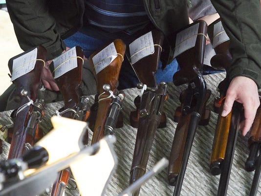 guns - firearms.jpg