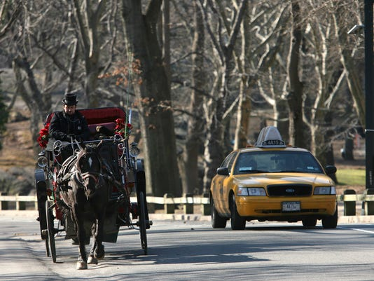 Horse-drawn carriage in Central Park