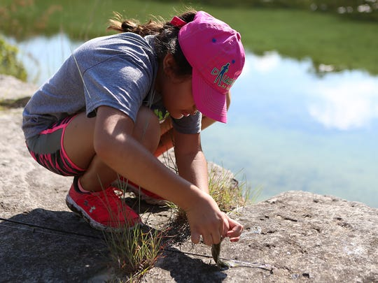 Sterling City elementary student unhooks a fish from her line during the Sterling City Outdoor Education Program, a 2 1/2-day overnight education camp in Leakey, Texas, Tuesday, September 5, 2017.