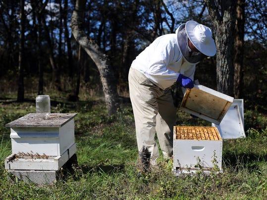 MUR BIZ Beekeeper 04.jpg