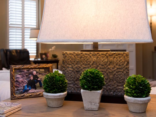 Three preserved boxwoods sit in front of a lamp with
