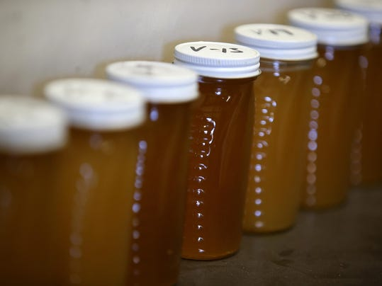 Statewide Drought Takes Toll On California's Honey-Producing Bee Population