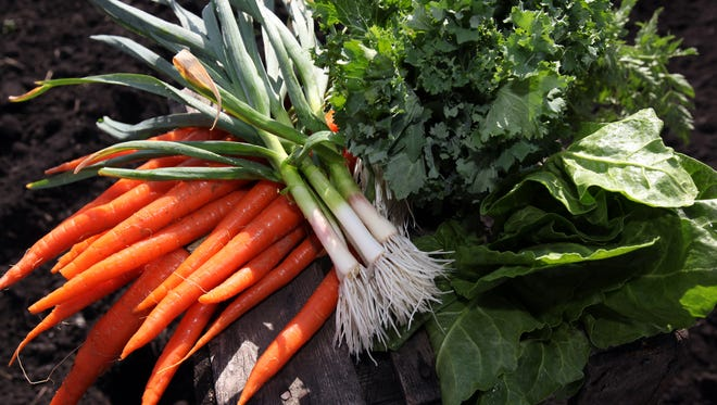 Parsley, Swiss chard, green garlic, kale and carrots grown by Cheryl Rogowski of Rogowski Farm in Pine Island. Rogowski is a second-generation farmer who has made many changes to the homestead.