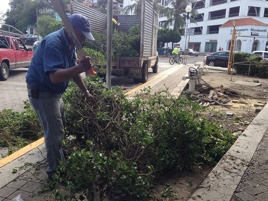 Workers clear downed trees in the port town of Manzanillo,
